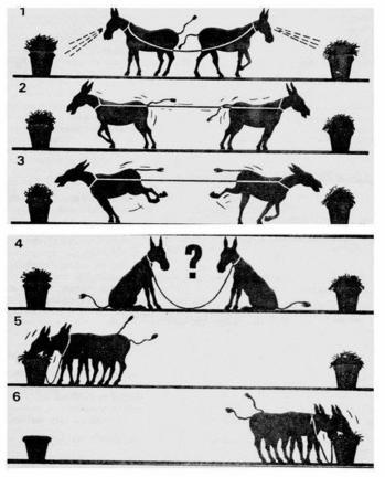 Competición vs Colaboración